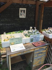 Farmers market in Japan
