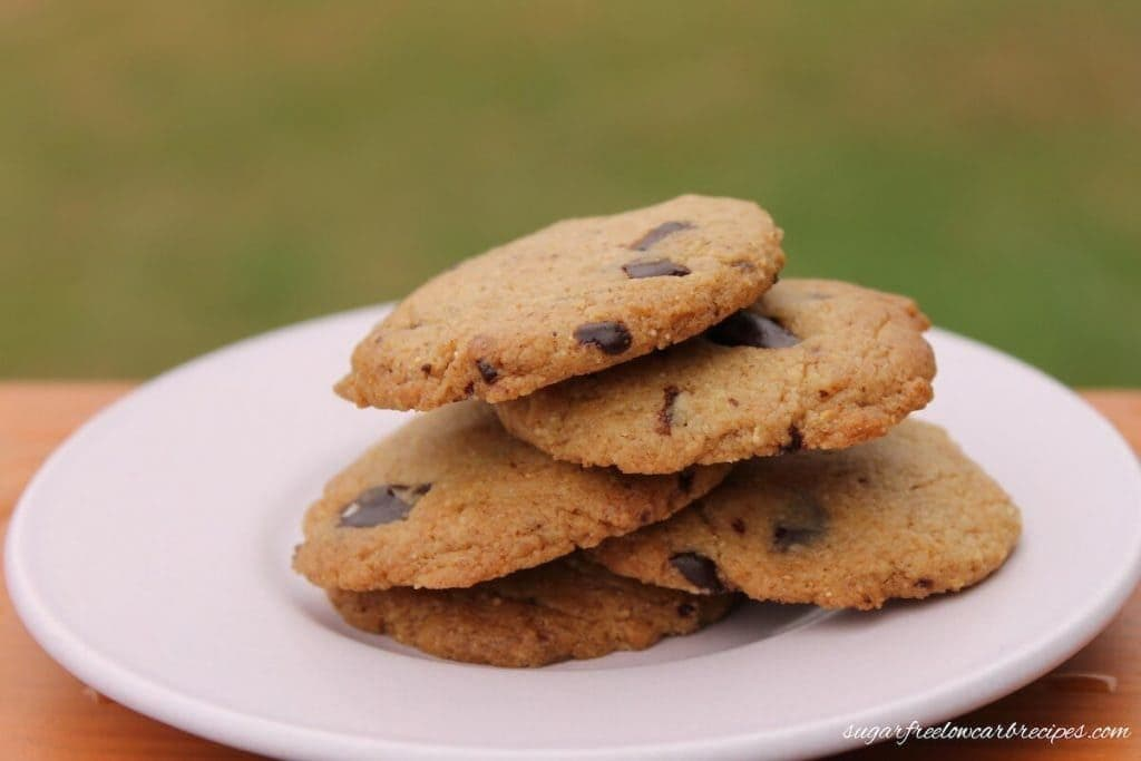 Paleo Flourless Chocolate Chip Cookie Recipe - Low Carb Yum - 20 Low Carb Dairy-free Baked Goodies Recipe Roundup